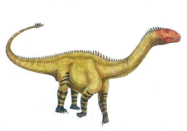 Shunosaurus.png