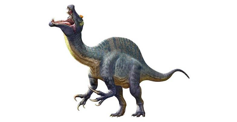 Sigilmassasaurus_3.jpg