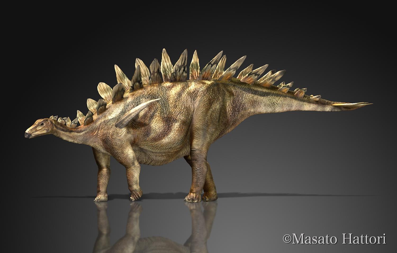 tuojiangosaurus_20150524.jpg