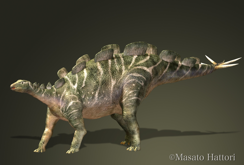 Wuerhosaurus_20140412.jpg