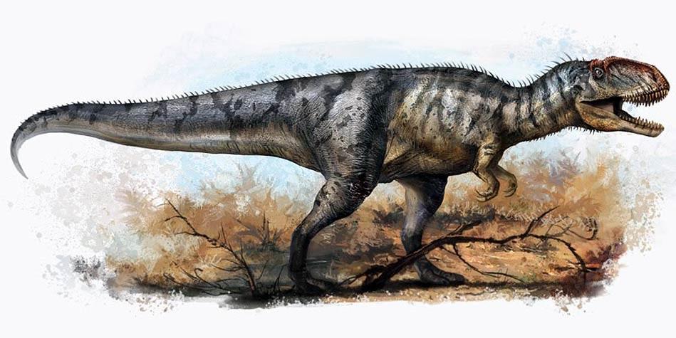 Yangchuanosaurus.jpg